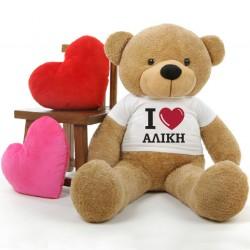 Αρκούδος 45cm ή 25 cm καθιστός, με Προσωποποιημένο tshirt με Καρδιά