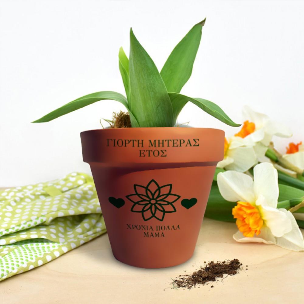 Πύλινη γλάστρα με σχέδιο λουλούδι, για κάθε αφορμή με Όνομα
