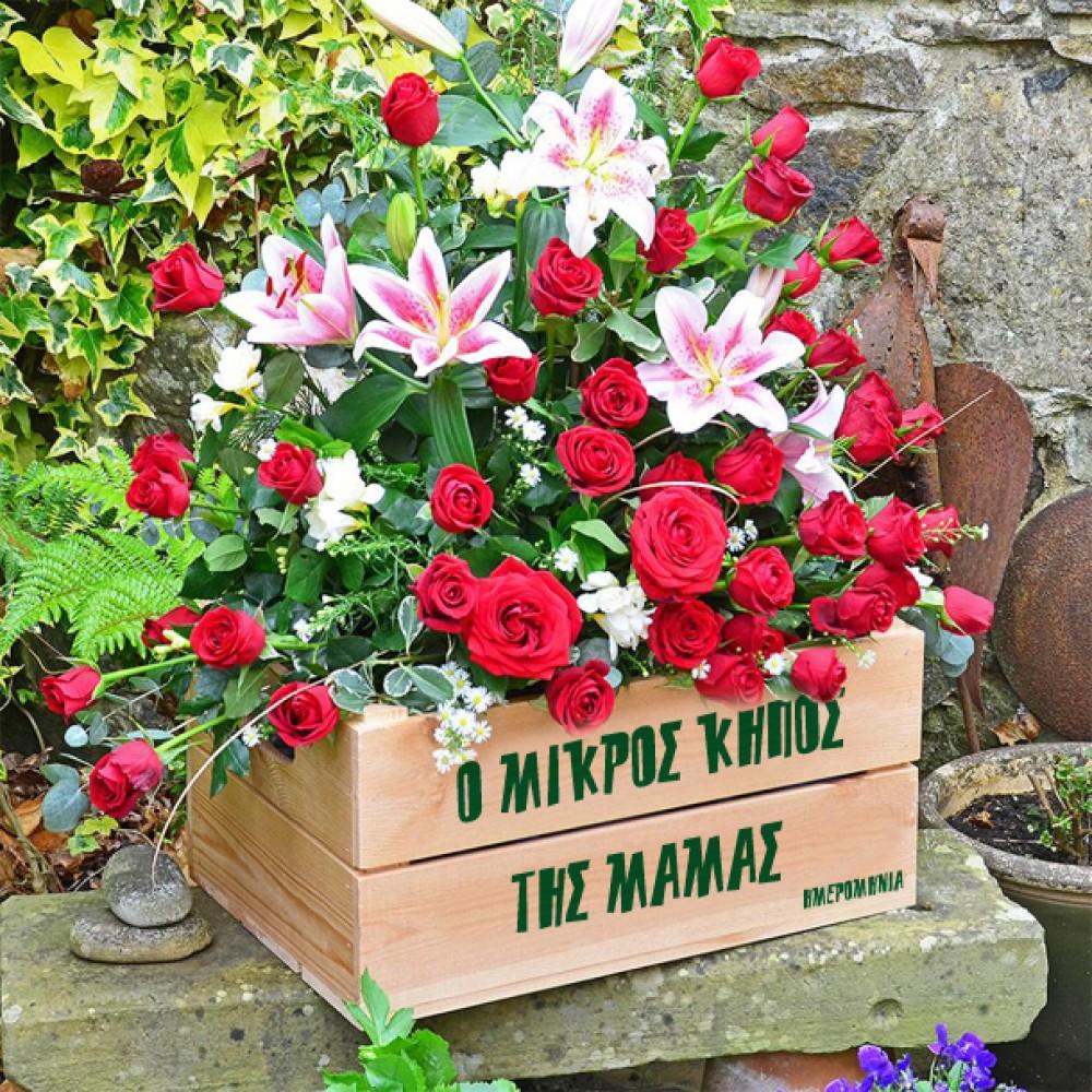 Ξύλινη Γλάστρα ο Μικρός Κήπος Προσωποποιημένη με Όνομα